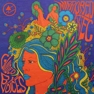 Rock/Pop Guided By Voices - Mirrored Aztec