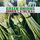 R&B/Soul/Funk Booker T. & The M.G.s - Green Onions