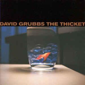 Rock/Pop David Grubbs - The Thicket (VG+)