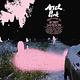Rock/Pop Ariel Pink - Dedicated To Bobby Jameson (25% OFF! Was $29.99)