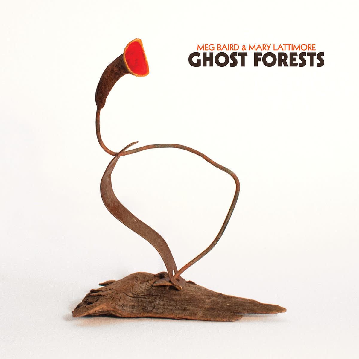 Rock/Pop Meg Baird & Mary Lattimore - Ghost Forests (Coke Bottle Clear)