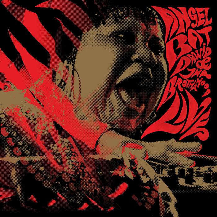 Jazz Angel Bat Dawid & Tha Brotherhood - Live