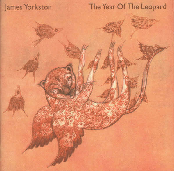 """Folk/Country James Yorkston - The Year Of The Leopard (2x10"""") (VG+)"""