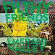 Rock/Pop Filthy Friends - Emerald Valley (BELOW COST BLOWOUT!)