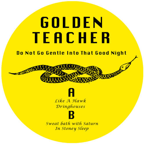 Electronic Golden Teacher - Do Not Go Gentle Into That Good Night (Screen Printed Hand Cut Sleeve) (NM)