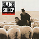 Hip Hop/Rap Black Sheep - A Wolf In Sheep's Clothing (2LP) (Price reduced due to a crease in the upper right corner of the cover)
