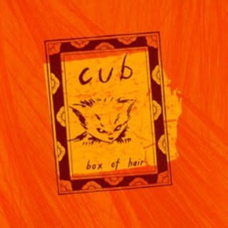 Rock/Pop Cub - Box of Hair