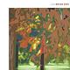 Rock/Pop Brian Eno - Lux