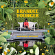 Jazz Brandee Younger - Somewhere Different