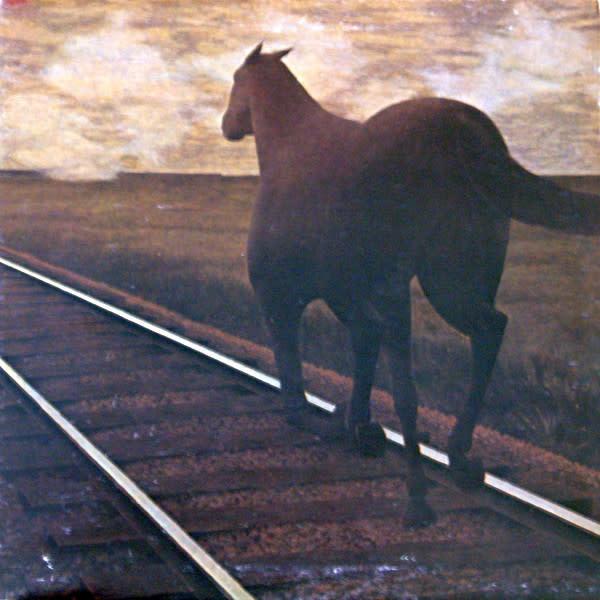 Rock/Pop Bruce Cockburn - Night Vision (Gold Transparent Vinyl) (VG+; hole punch, shelf-wear)