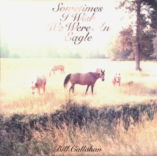 Rock/Pop Bill Callahan - Sometimes I Wish I Were An Eagle