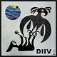 Rock/Pop DIIV - Oshin