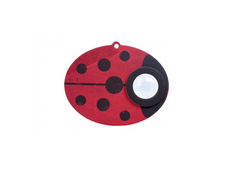Insect Eye Ladybird