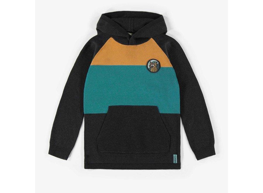 Hooded knit sweatshirt
