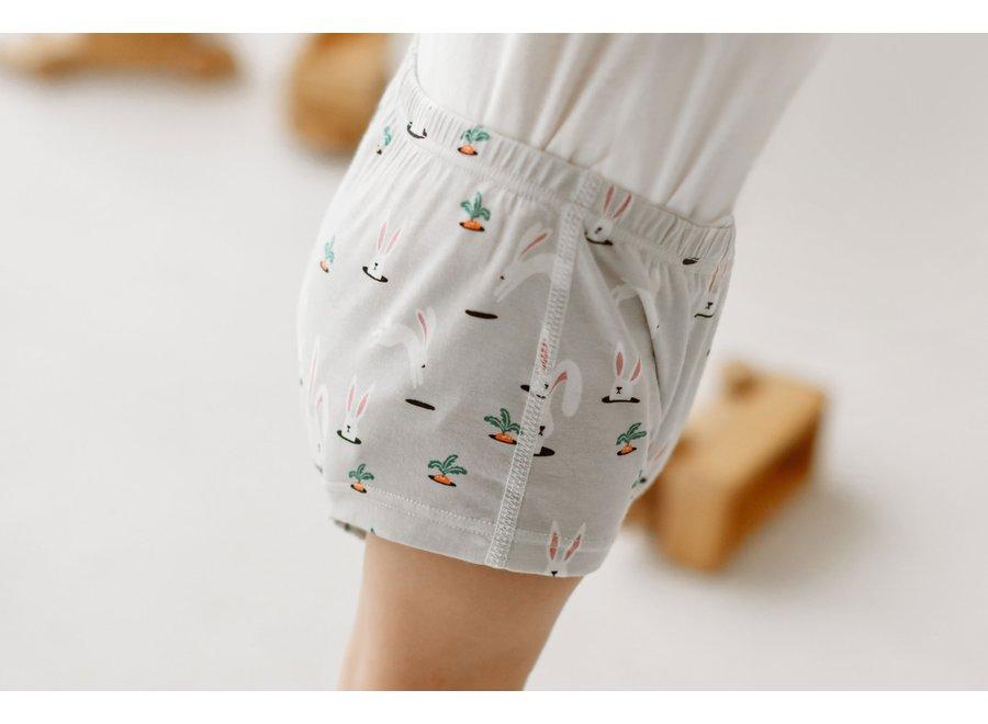 Bamboo Girls Boy Short Underwear (2 Pack)