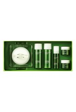 Ginseng Gold Silk Watery Cream Special Set