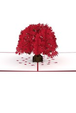 Lpop Japanese Maple Tree Card