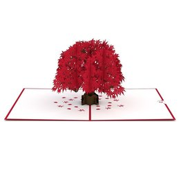 Lpop Japanese Maple Tree Card