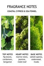 MBL Bath Wash Coastal Cypress+ Sea Fennel