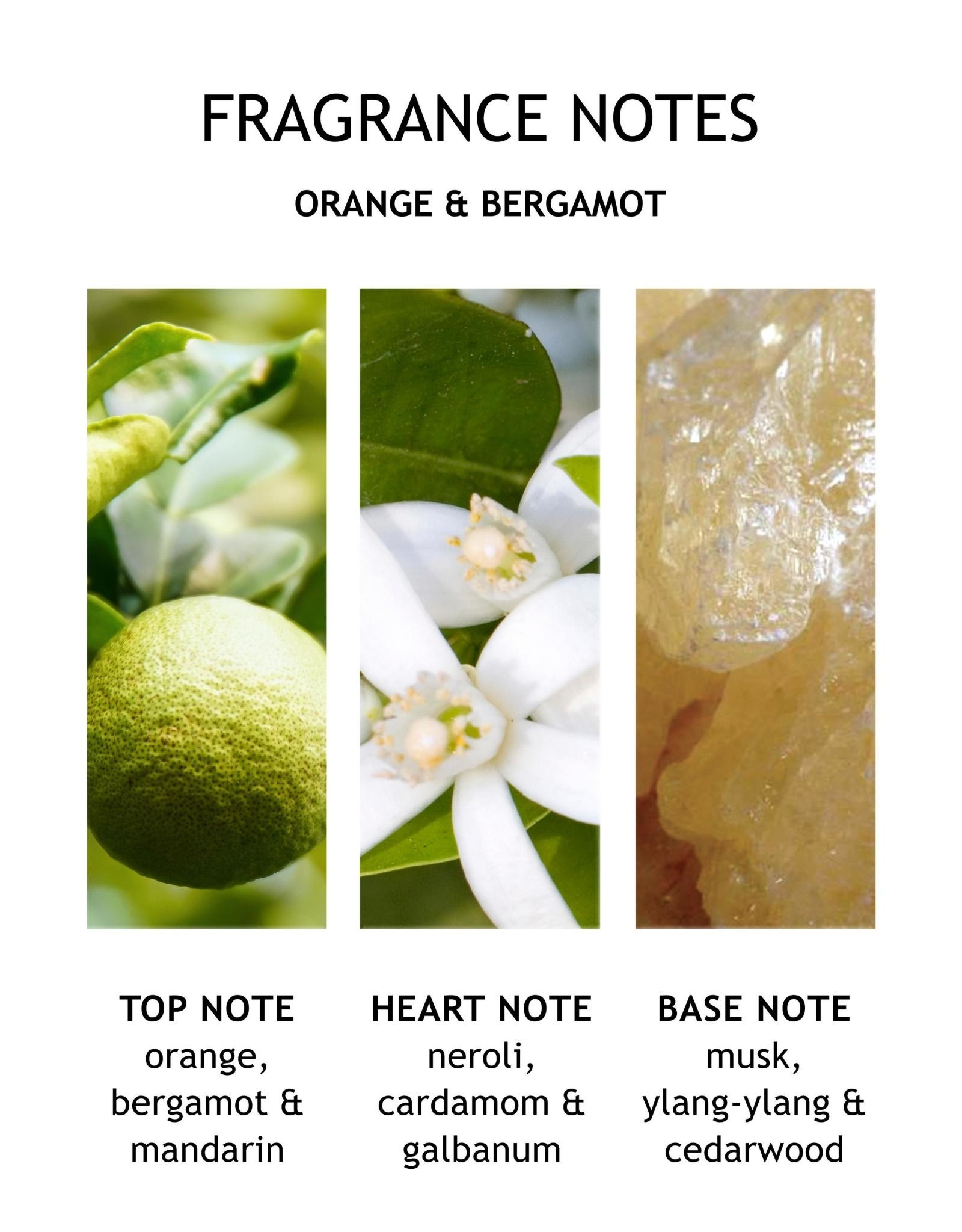 MBL Hand Lotion Orange + Bergmot