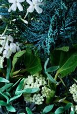 MBL Hand Wash Coastal Cypress+ Sea Fennel
