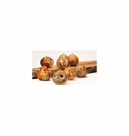 Lucuma Forest Animal Gourd Ornaments, assorted