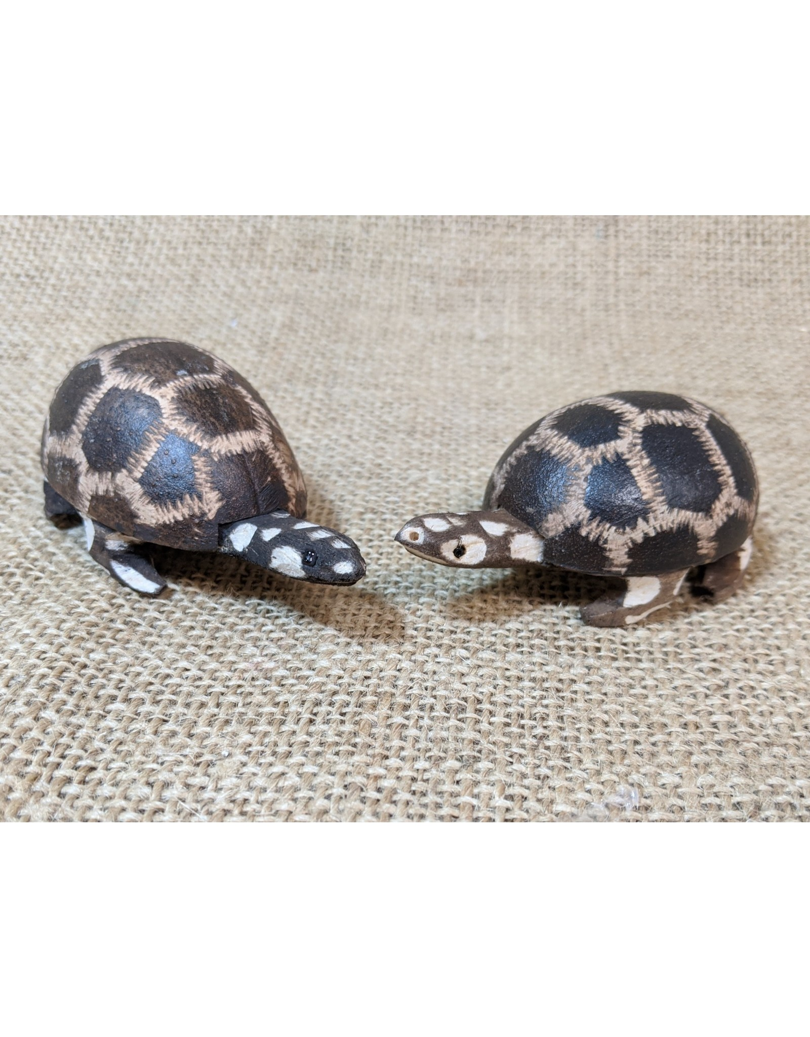 Jamtown Baby Wingo Turtle Shaker