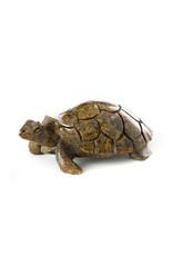 Swahili Wholesale Serpentine Stone Box Turtle, Zimbabwe