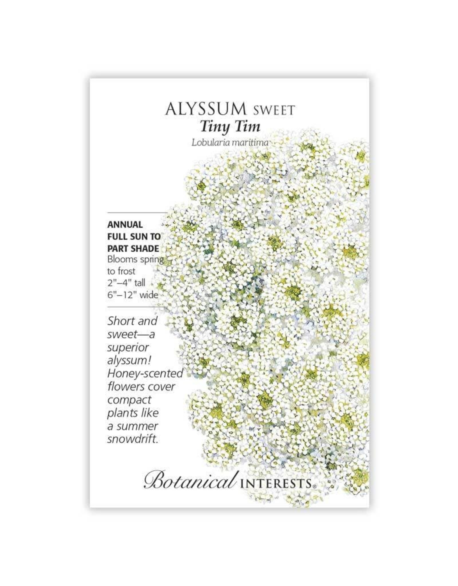 Seeds - Alyssum Sweet Tiny Tim