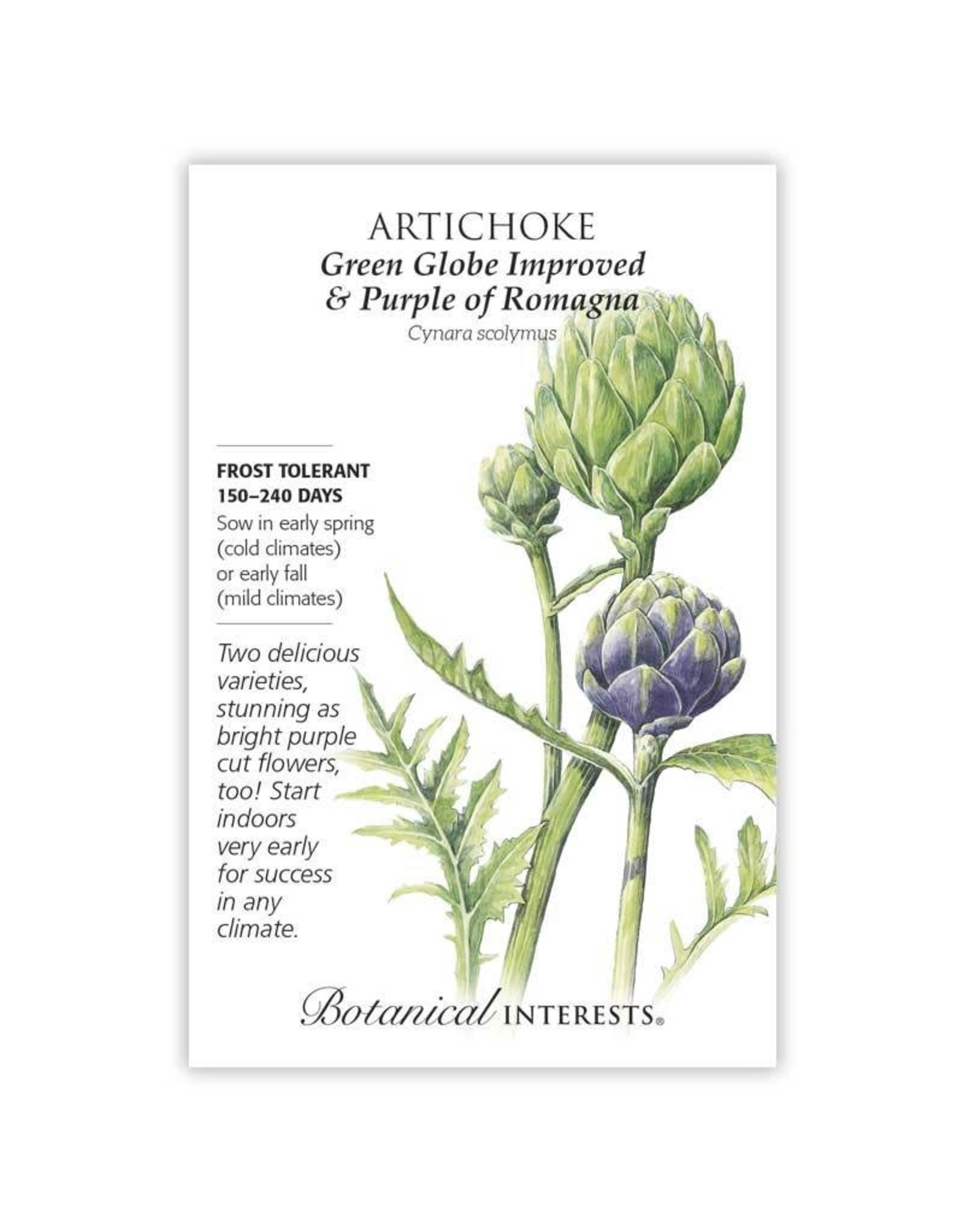Seeds - Artichoke - Green Globe + Purple of Romagna