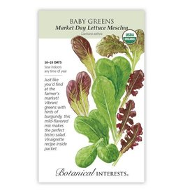 Seeds - Baby Greens Lettuce Market Day - Organic