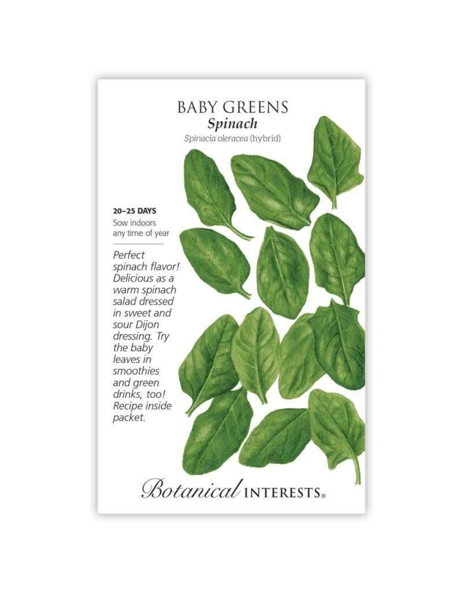 Seeds - Baby Greens Spinach, Large