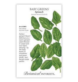 Seeds - Baby Greens Spinach