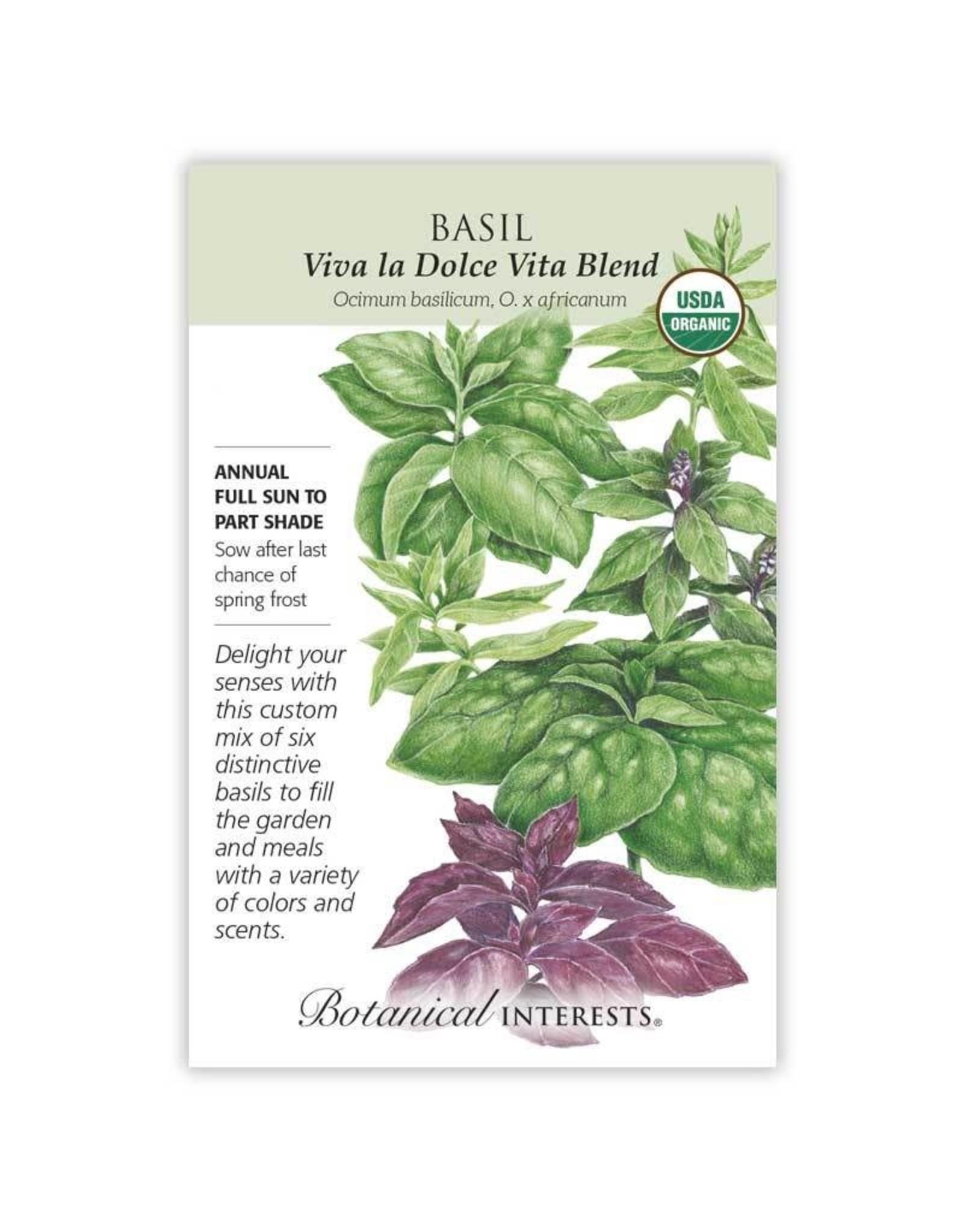 Seeds - Basil Viva la Dolce Vita Blend Organic