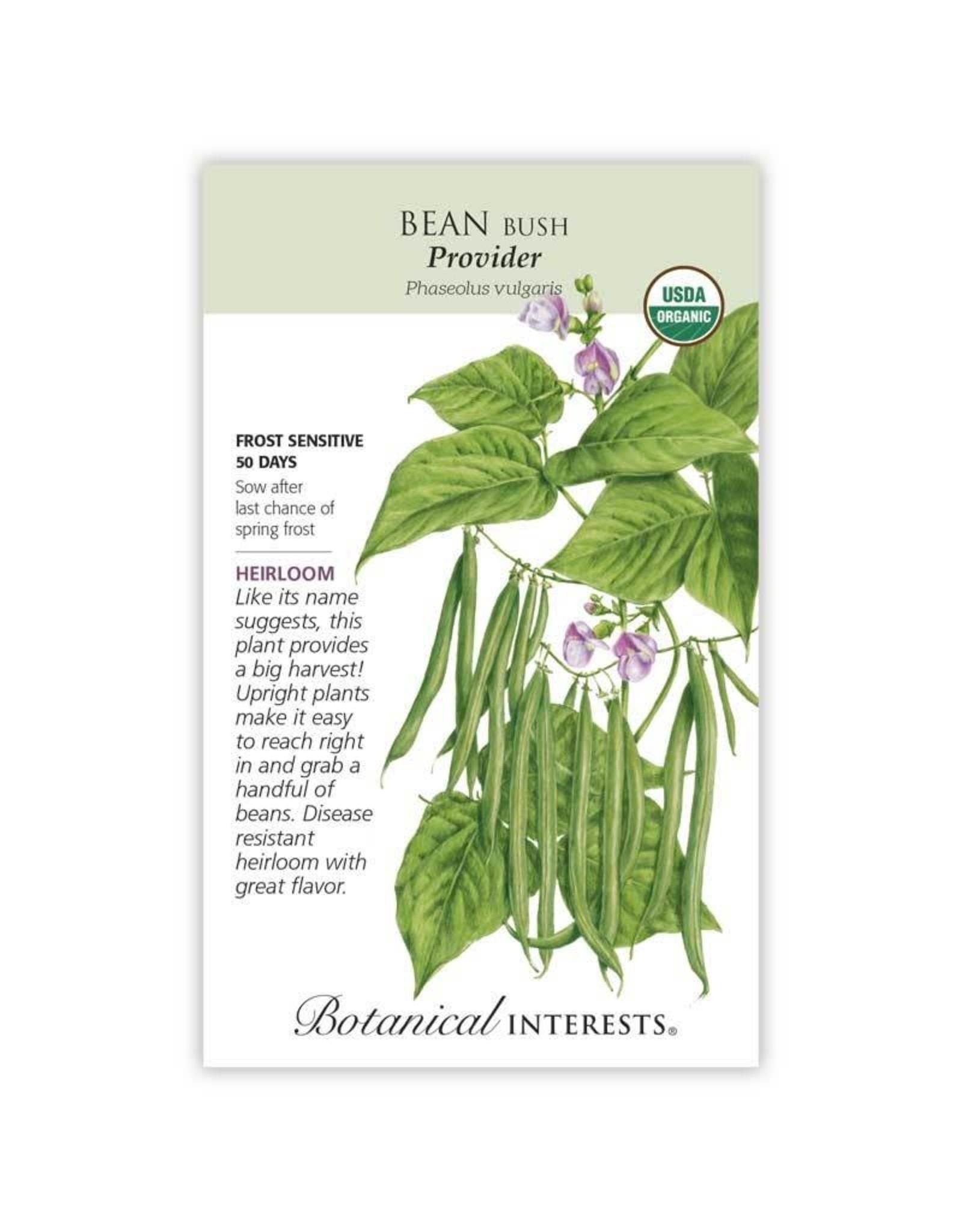 Seeds - Bean Bush Provider Organic