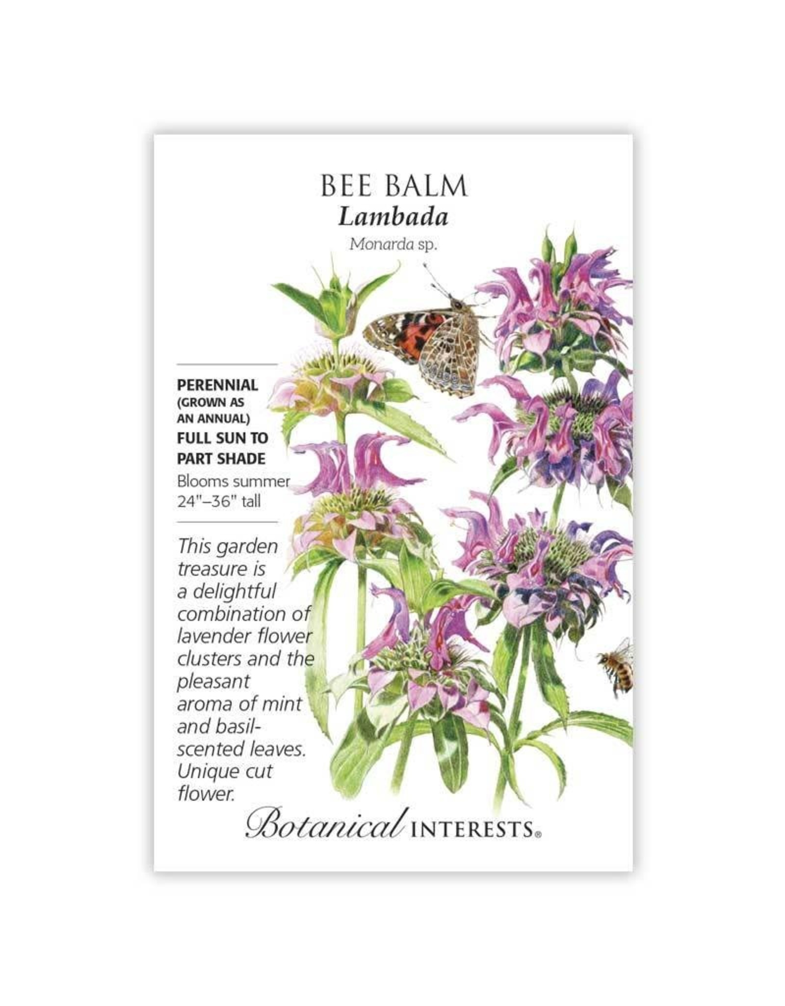 Seeds - Bee Balm Lambada