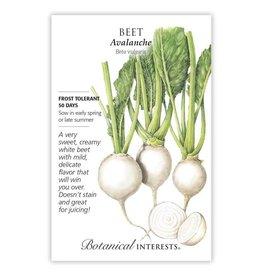 Seeds - Beet Avalanche