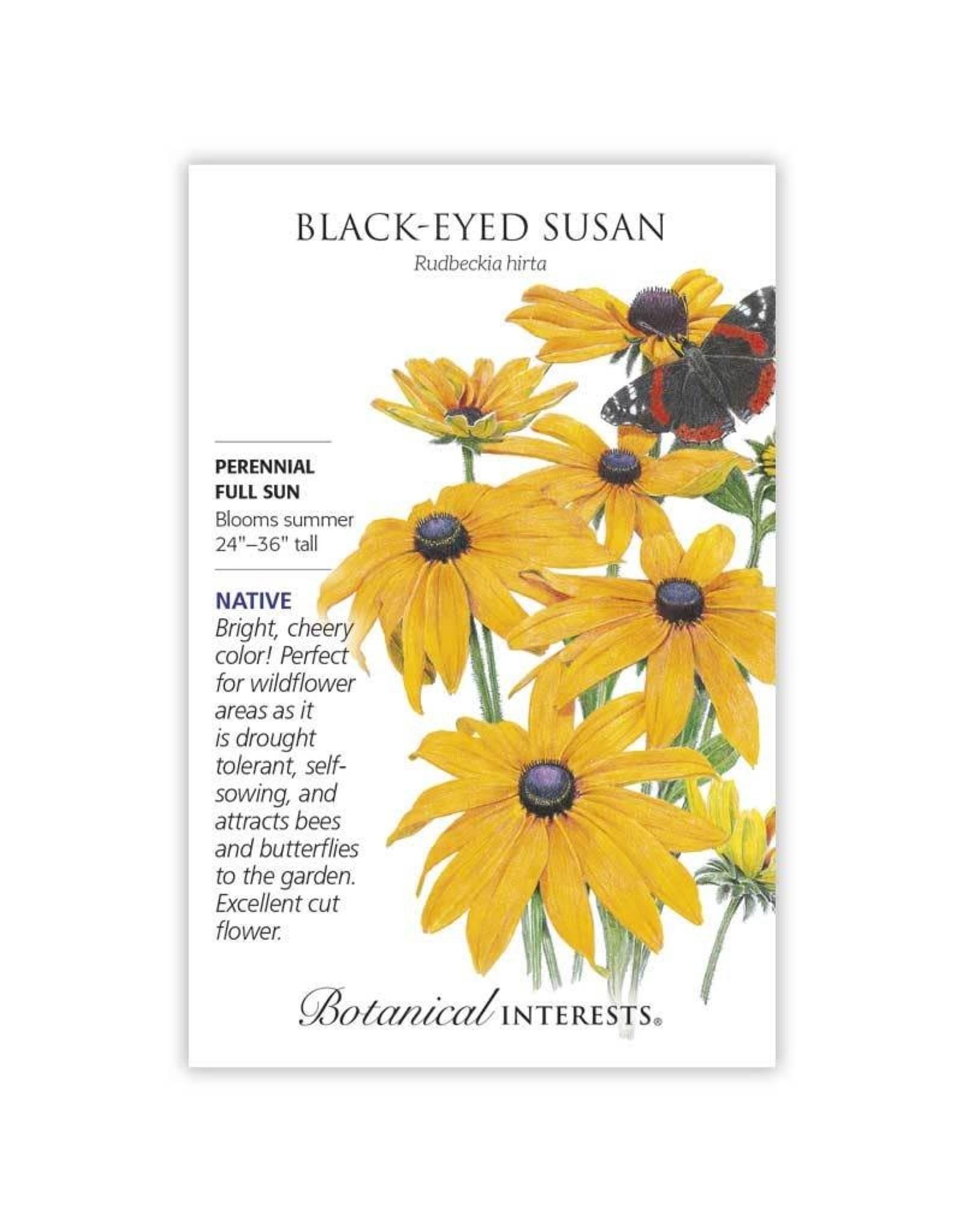 Seeds - Black Eyed Susan