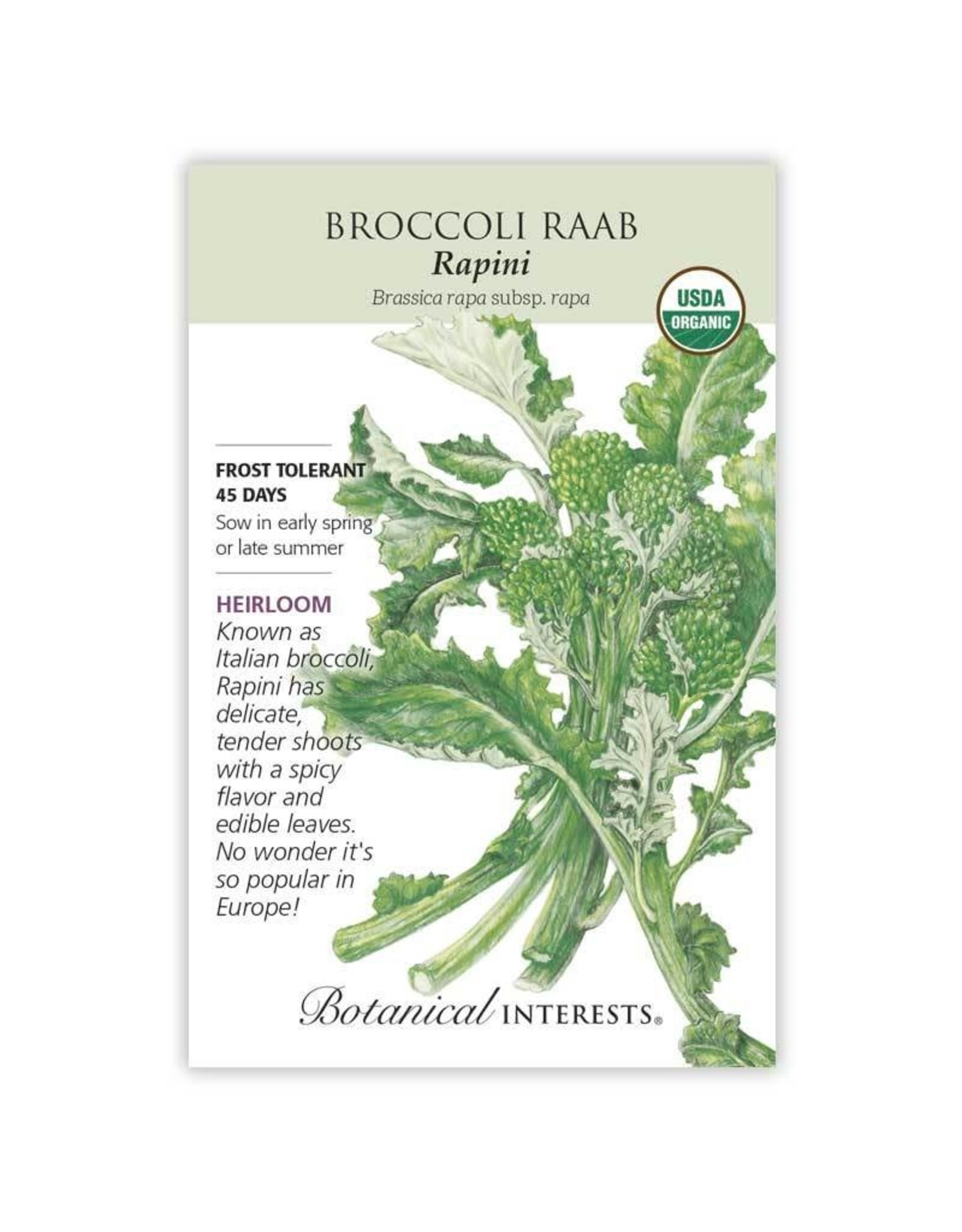 Seeds - Broccoli Raab Rapini Org