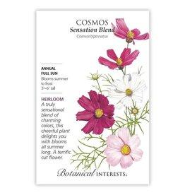 Seeds - Cosmos Sensation Blend