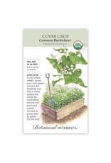 Seeds - Cover Crop Buckwheat Organic