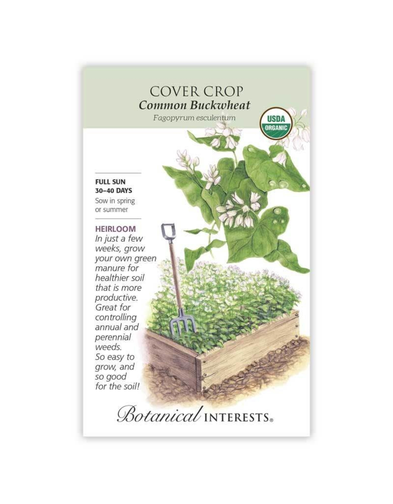 Seeds - Cover Crop Buckwheat Organic, Large
