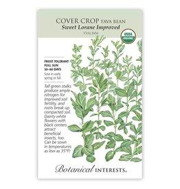 Seeds - Cover Crop Fava Bean, Sweet Lorane, Organic, Large