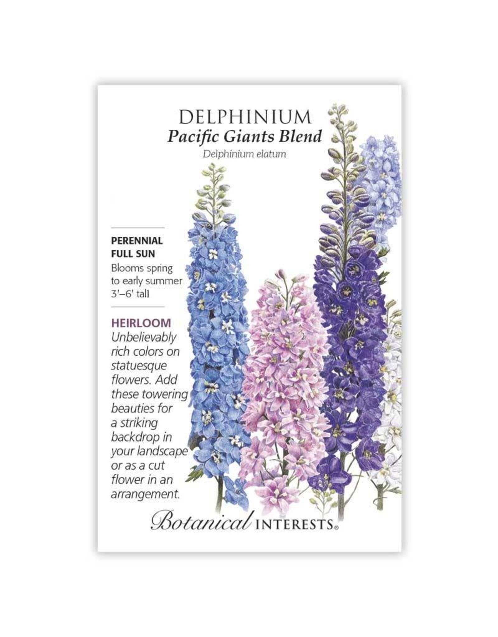 Seeds - Delphinium Pacific Giant Blend