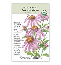 Seeds - Echinacea Purple Coneflower Organic