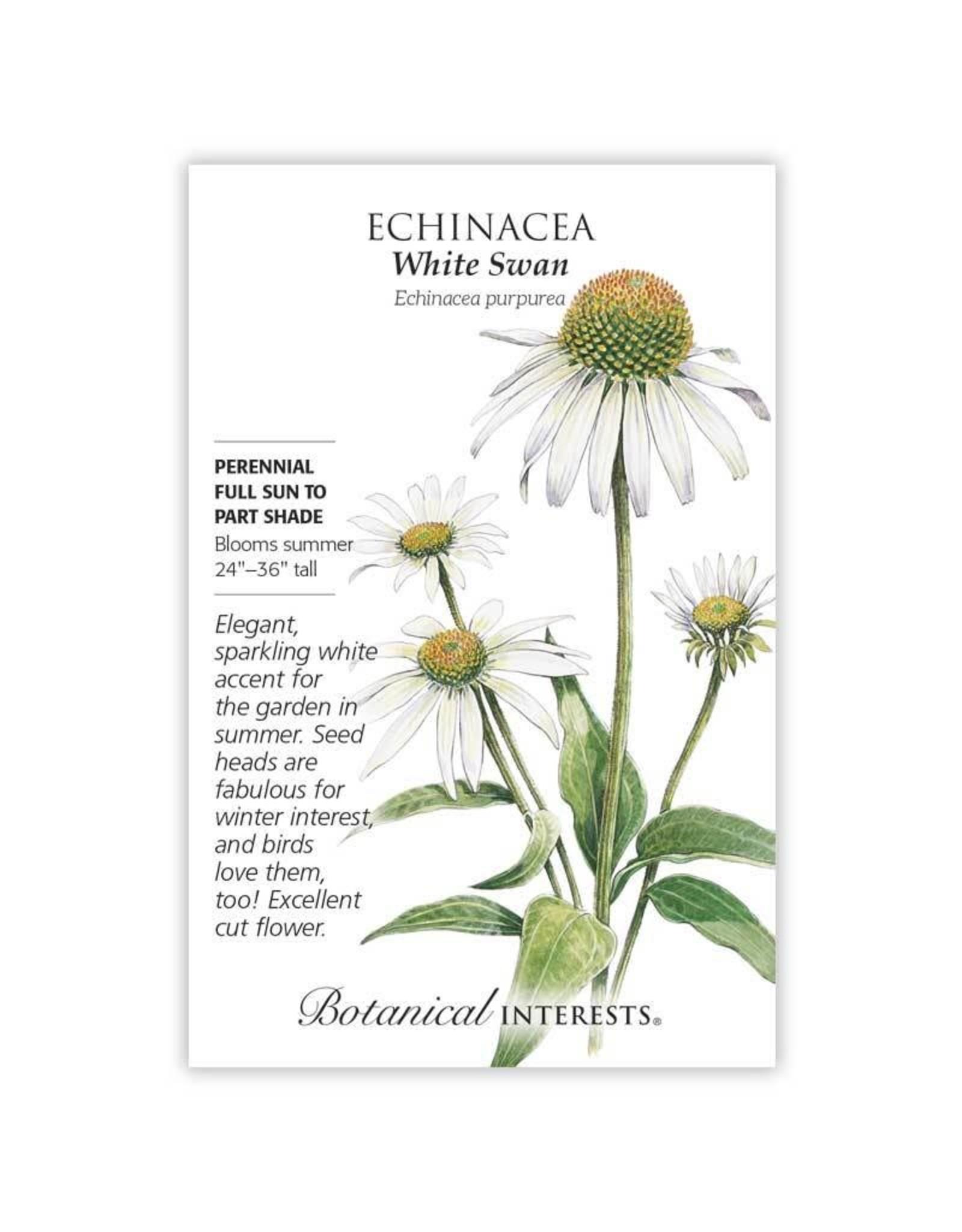 Seeds - Echinacea White Swan