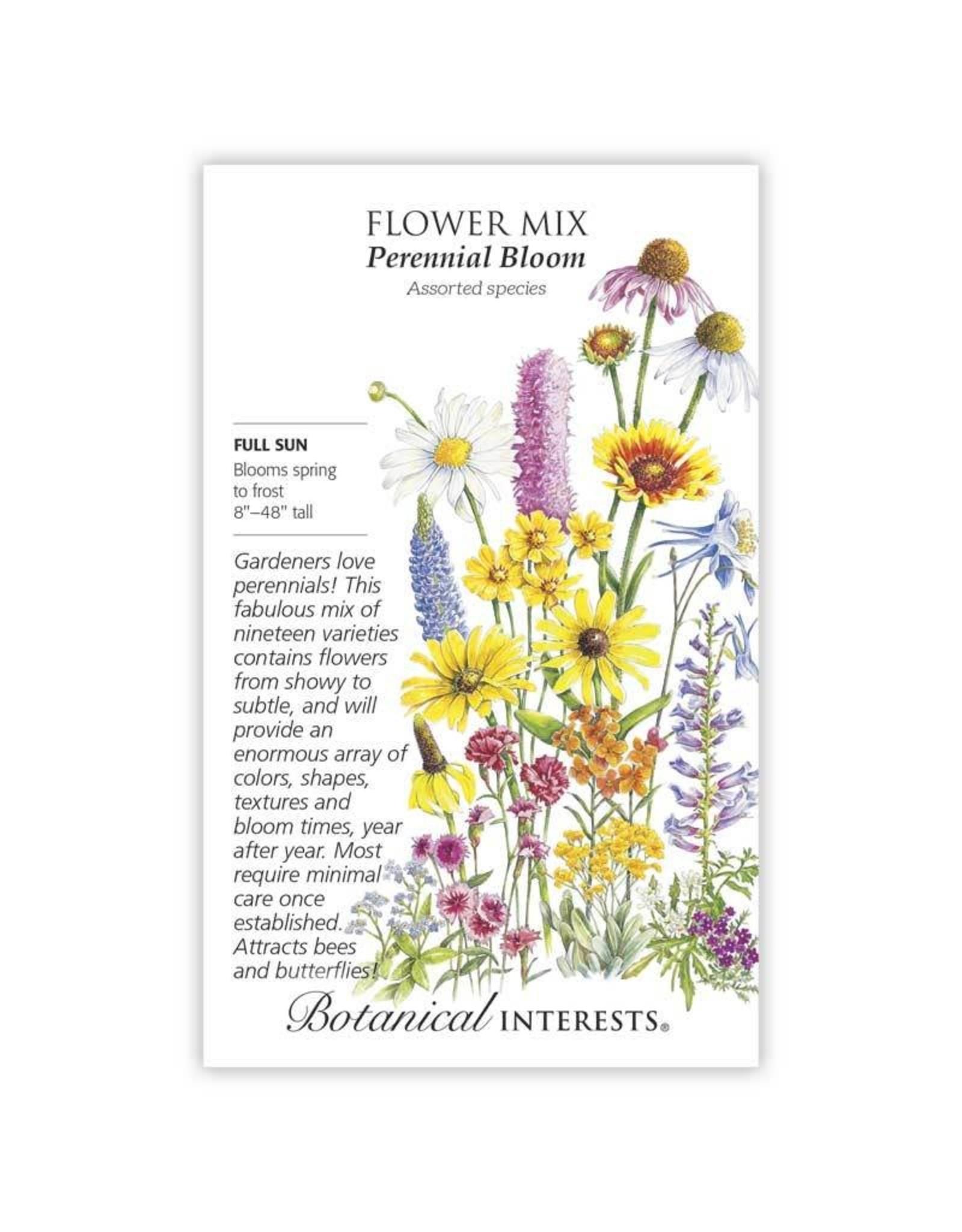 Seeds - Flower Mix Perennial Bloom, Large