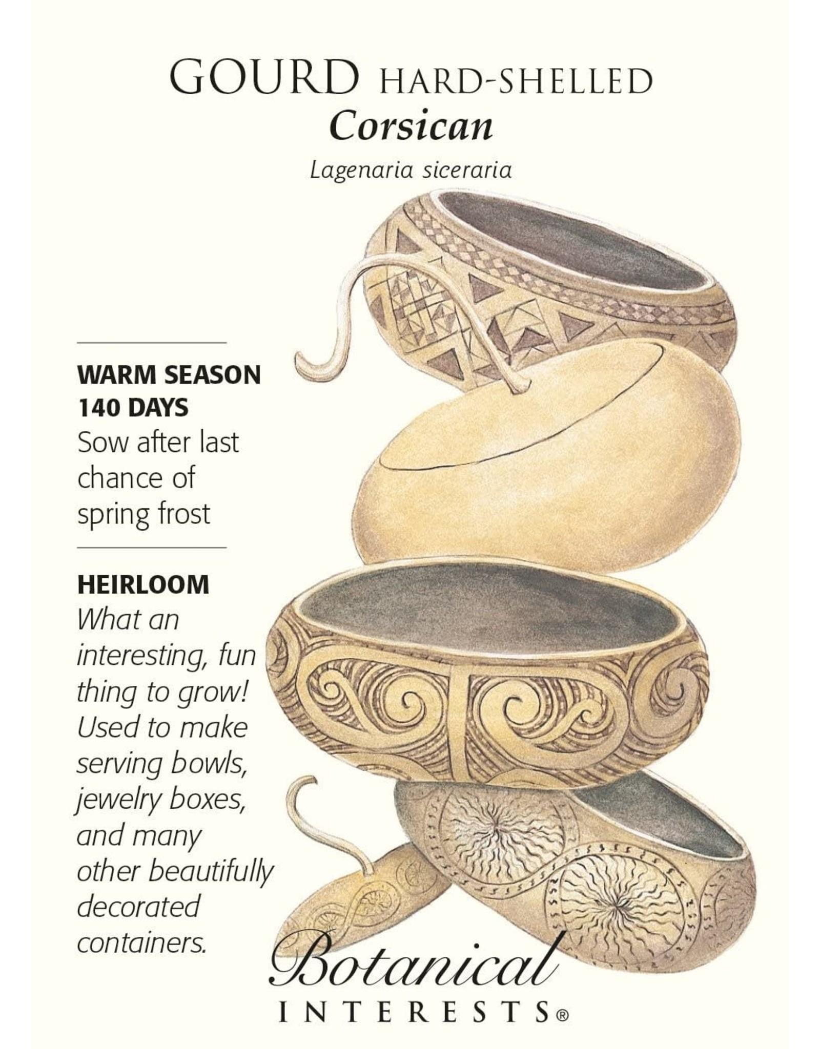 Seeds - Gourd Hard-Shelled Corsican