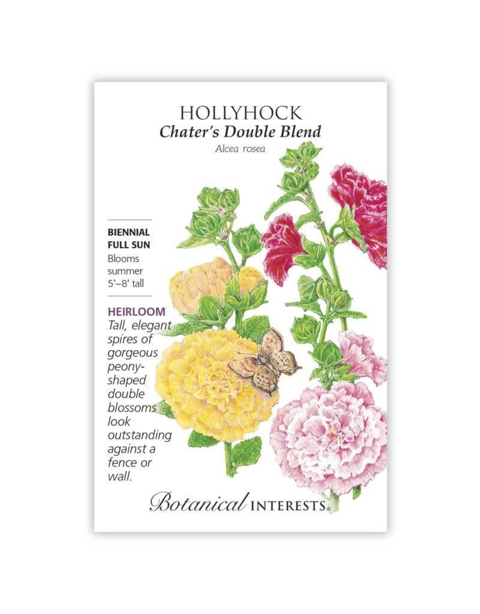 Seeds - Hollyhock Chater's Double