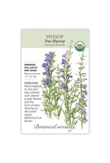 Seeds - Hyssop True Organic
